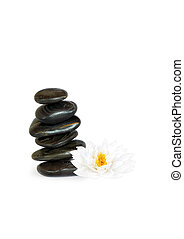 Spa Stones and Lotus Lily