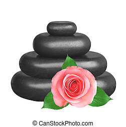 Spa stones and pink roses isolated on white