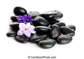 Spa stones and purple flower, isolated on white. flower in stone with drops of water