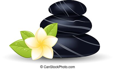 spa stones spa still life with stones and orchid flower vector