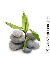 Spa stones. - Balanced spa stones with bamboo plant and...