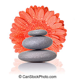 Spa stones with red gerbera isolated on white