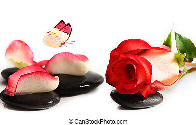 Spa stones with rose flower and butterfly on a white...