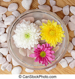 Spa treatment - bowl with warm water and flowers