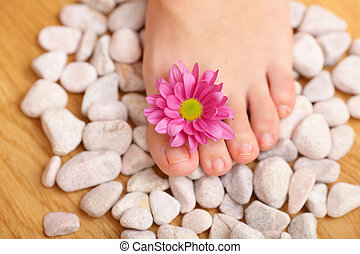 spa treatment for woman leg