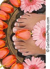Spa Treatment - Spa treatment with beautiful elegant tulips...