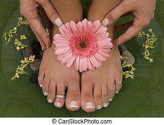 Spa Treatment - Spa treatment with elegant pink gerbera
