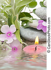 spa treatment with natural herbs and essences