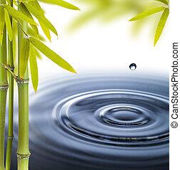 spa, vida, com, água, círculos