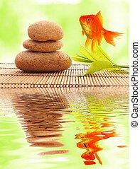 spa, zen, oder