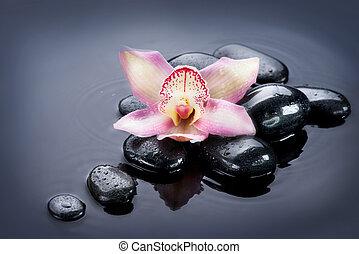 spa, zen, pedras