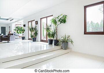 Space in expensive house - Horizontal view of space in...