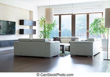 spacieux, salle de séjour