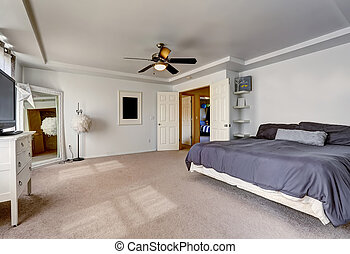 Spacious master bedroom with large bed