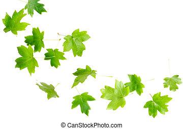 spadanie, zielone listowie