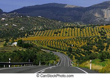 Spain, near Malaga