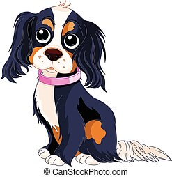 Spaniel Dog - Illustration of Cavalier King Charles Spaniel