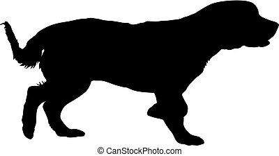 Spaniel dog silhouette on a white background