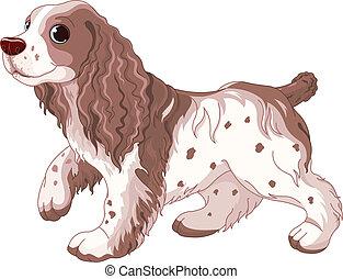 spaniel, hund