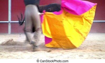 spanish bullfight, powerful bull