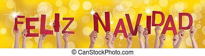 Spanish Feliz Navidad on Golden Background - The Spanish...