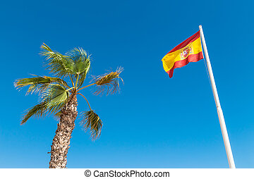 Spanish flag and palm tree in the blue sky