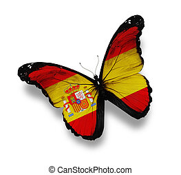 Spanish flag butterfly, isolated on white