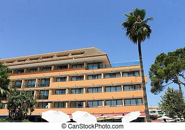 Spanish hotel and palm tree