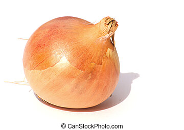spanish onion over a white background