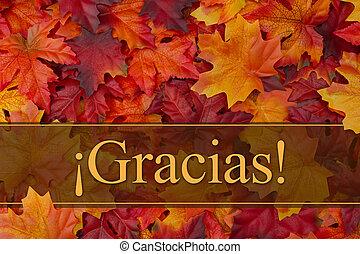 Spanish Thank You Greeting