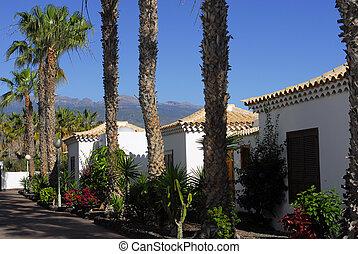 spanish villa and palm trees
