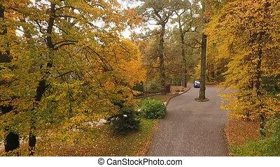 Spans on the autumn park paths, along the path the car moves...