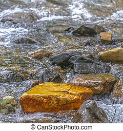Sparkling clear water flowing on a rocky stream