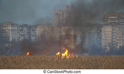 Sparkling flame whooping on wetland on the Dnipro quay in...