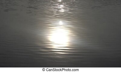 Sparkling on the water surface