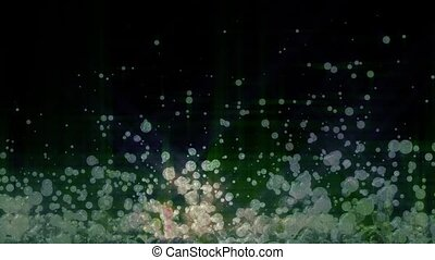 Sparkling Particles Background - Blue Green