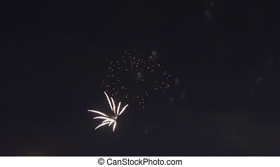 Sparkling red green yellow celebration fireworks over starry...