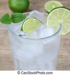 Sparkling water drink with ice cubes - Cold sparkling water...