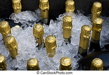 Sparkling wine - Bottles of sparkling wine in a tub with ice