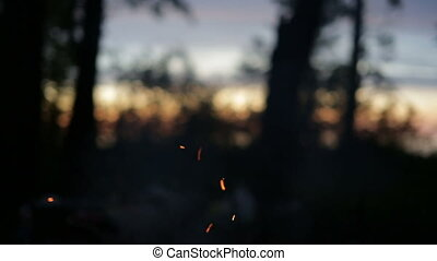 Sparks from the fire in the night forest