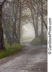 Sparks Lane, foggy sunrise, cades cove, great smoky...