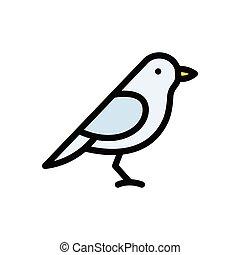 sparrow  flat color icon