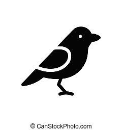 sparrow glyph flat icon
