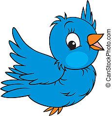 Sparrow - Little blue bird flying