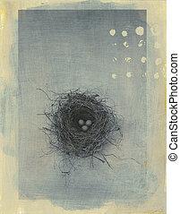 Black Throated Sparrows nest. Photo based mixed medium image.
