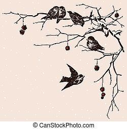 sparrows on the branches