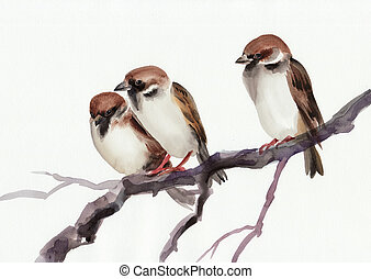 Watercolor original painting of sparrows on a branch. Asian style.