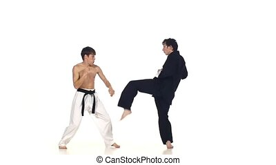 Sparrynh taekwondo and wushu or karate man on a white background, blows from each other, Slow motion