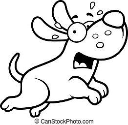 spaventato, cartone animato, cane