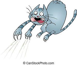 spaventato, gatto